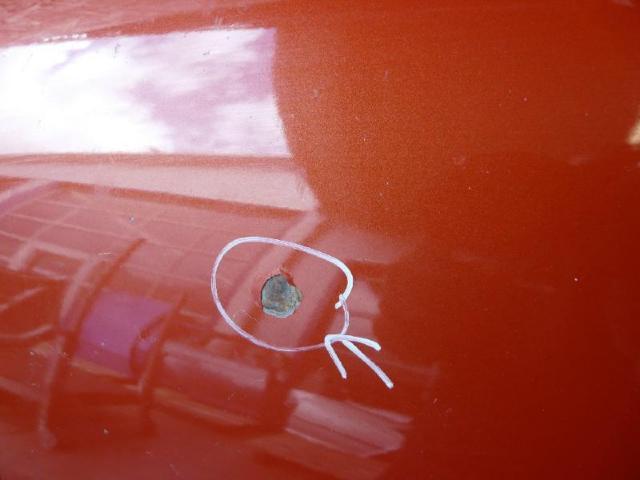 Motorhaube golf 4 la2y rot bild1