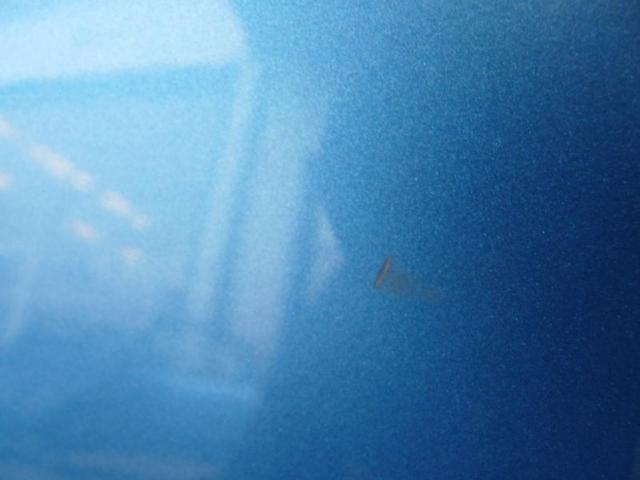 Tuer hinten links c-max fc:dm2 Bild