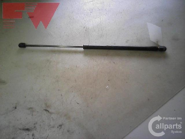 Gasdruckdaempfer hinten Bild
